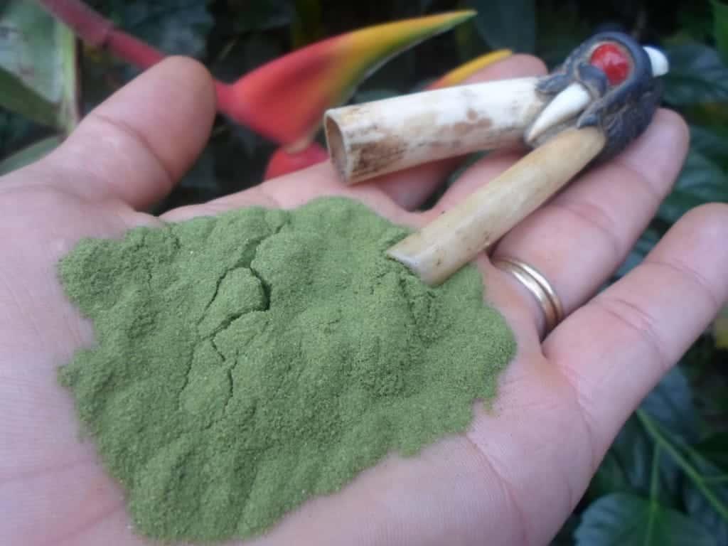 green rape snuff kuripe reiki shamanic healing berlin