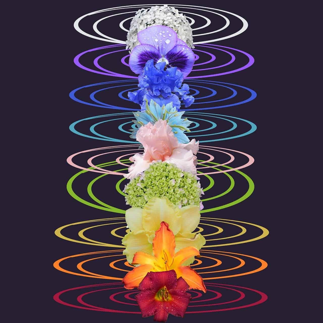 7 chakra flowers reikishamanichealing