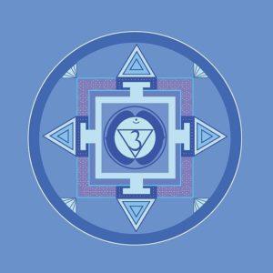 6 Ajna the chakra of the third eye reikishamanichealing