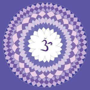 7 Sahasrara the crown chakra reikishamanichealing