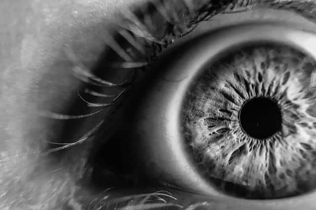 sananga eye drops eye reiki shamanic healing berlin alessandro ferrari
